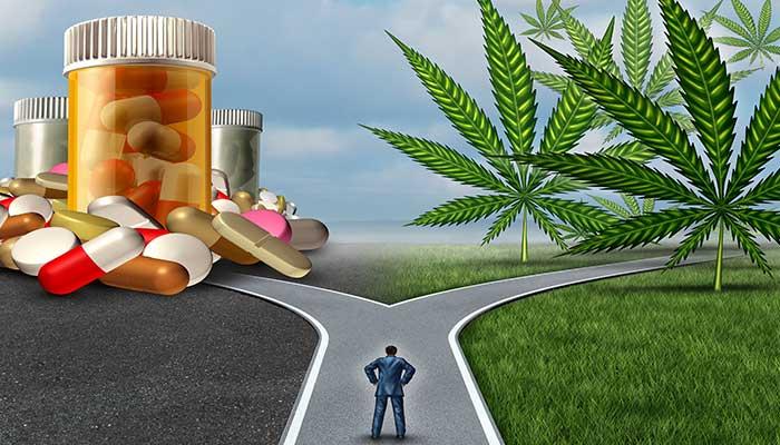 Health-Benefits-of-cannabis.jpg